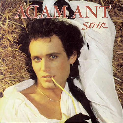 Strip fra Adam Ant