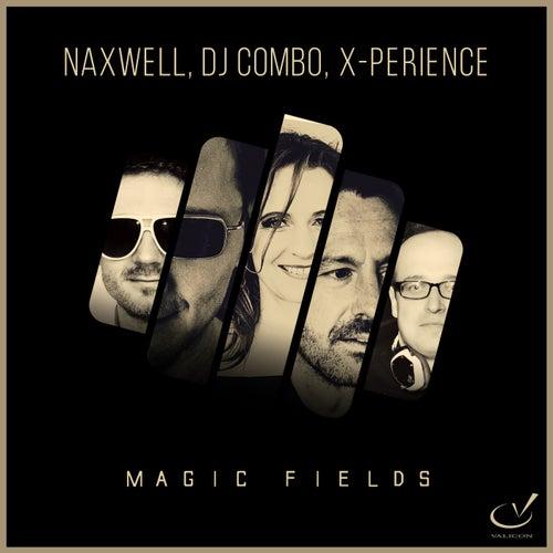Magic Fields by Naxwell