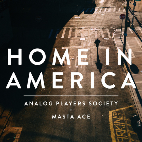Home in America by Analog Players Society