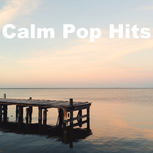 Calm Pop Hits by Various Artists