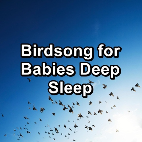 Birdsong for Babies Deep Sleep by Spa Relax Music