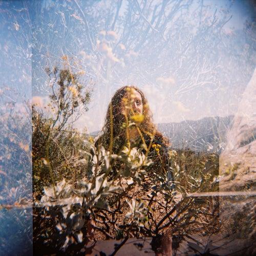 SUNDAYS by Nate Mercereau