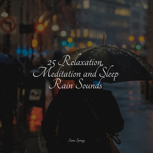 25 Relaxation, Meditation and Sleep Rain Sounds by Sleeping Baby Songs
