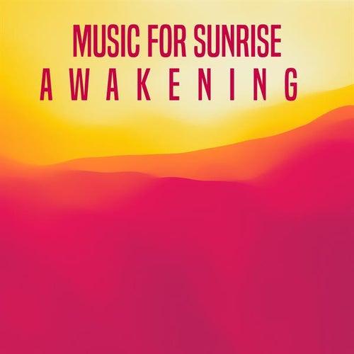 Music for Sunrise: Awakening de Various Artists