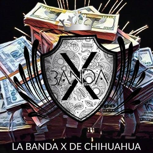 Pacas Verdes de La Banda X de Chihuahua