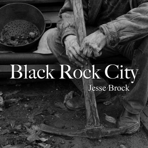 Black Rock City by Jesse Brock