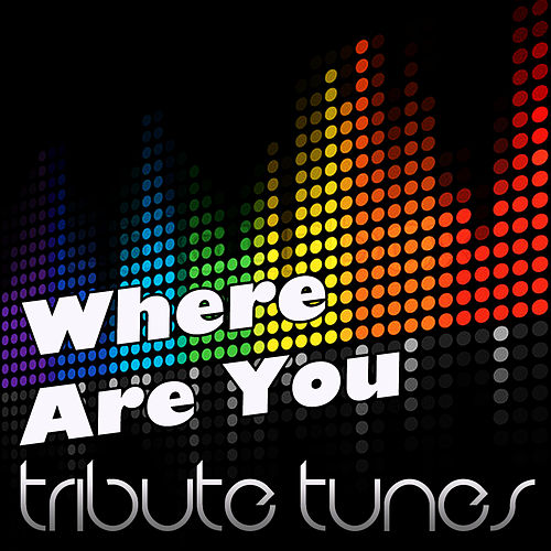Where Are You (Tribute to B.O.b Vs. Bobby Ray) de Perfect Pitch