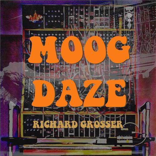 Moog Daze by Richard Grosser