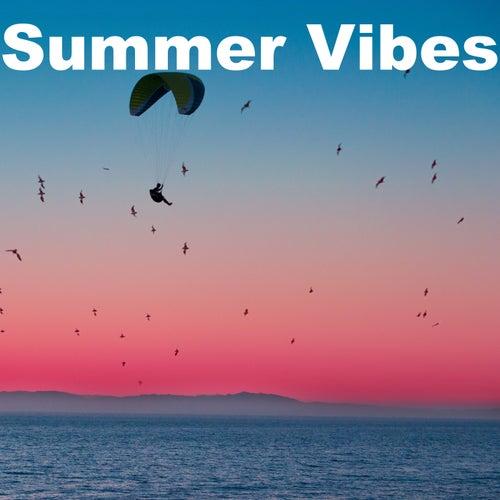 Summer Vibes de Various Artists