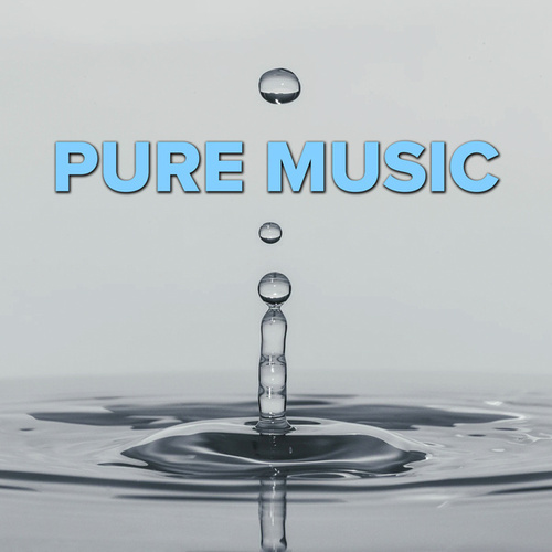 Pure Music by Various Artists