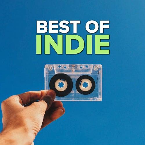 Best Of Indie by Various Artists