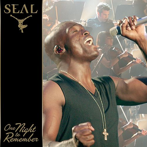 One Night To Remember de Seal
