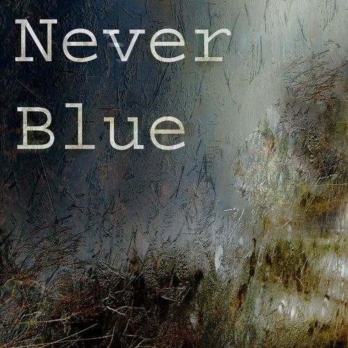 Never Blue fra Jan Json
