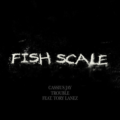 Fish Scale by Cassius Jay