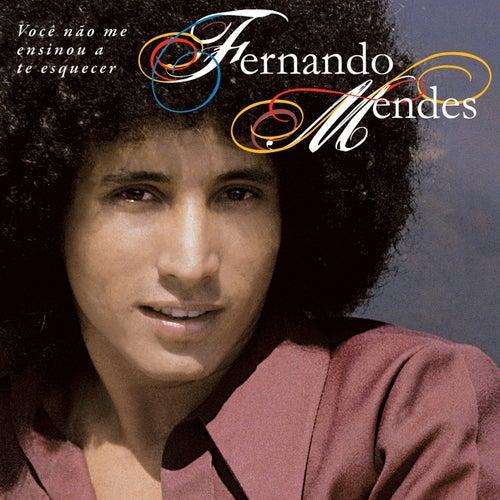 Você Não Me Ensinou a Te Esquecer de Fernando Mendes