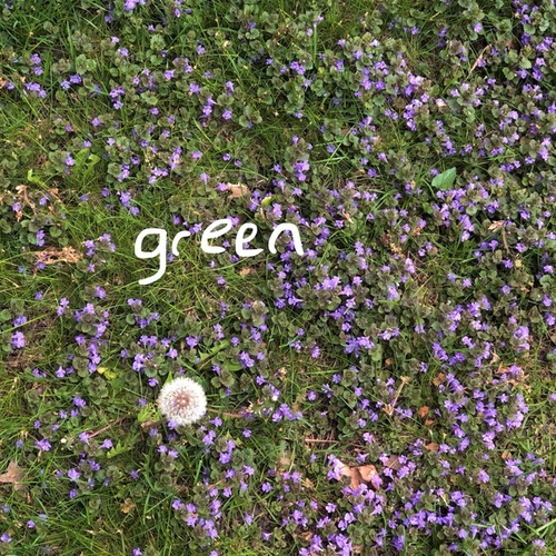 green de Maks