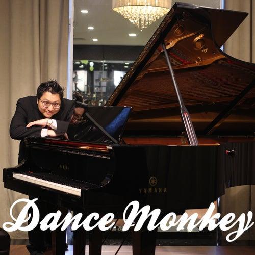 Dance Monkey (Piano Version) von Ray Mak