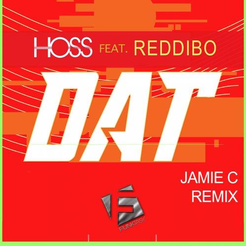 DAT (Jamie C Remix) by Hoss