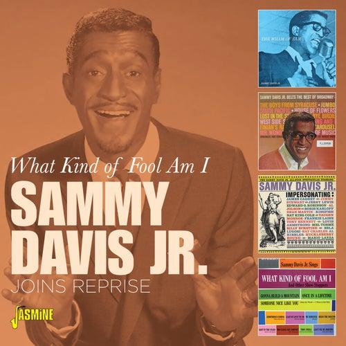 What Kind of Fool Am I: Joins Reprise von Sammy Davis, Jr.