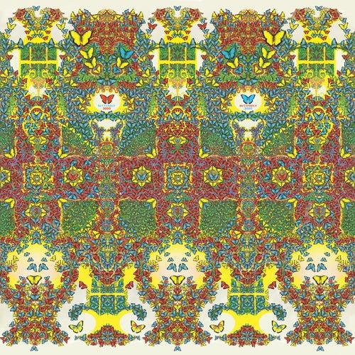 Butterfly 3000 by King Gizzard & The Lizard Wizard