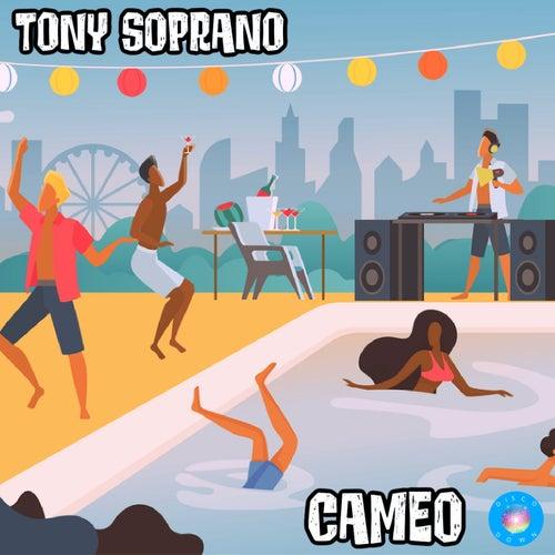 Cameo by TonySoprano