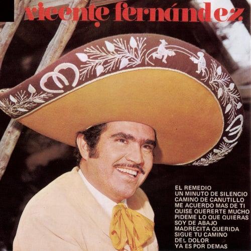 Vicente Fernandez de Vicente Fernández