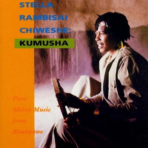 Kumusha by Stella Chiweshe