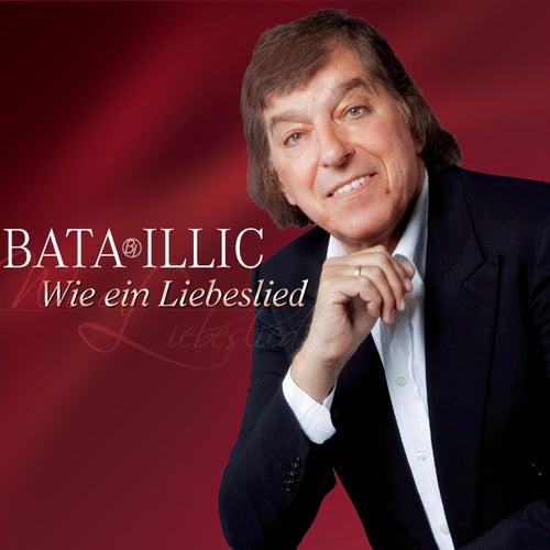 Wie ein Liebeslied von Bata Illic