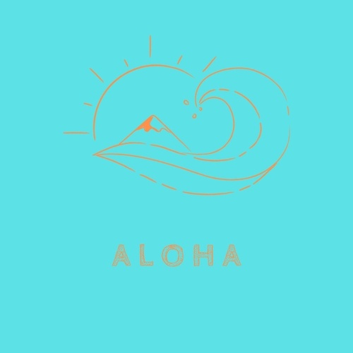 Aloha by The Surfmen