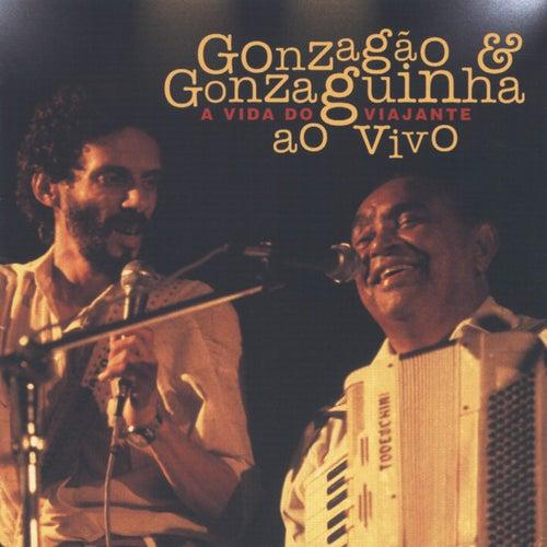 A Vida Do Viajante de Luiz Gonzaga