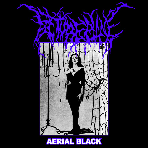 Aerial Black by Pictureplane