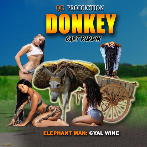 Gyal Wine by Elephant Man