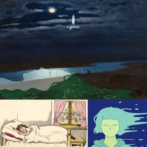 잠잘때 듣는 포근한 수면음악 모음집 3 Collection Of Soothing Bedtime Music When Sleeping 3 von 사이프러스 Cypress