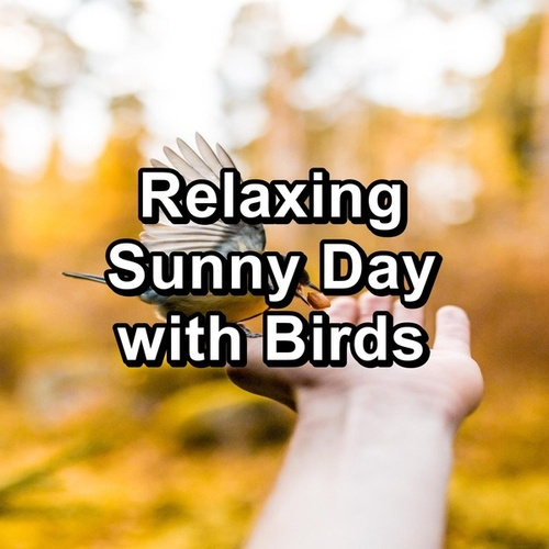 Relaxing Sunny Day with Birds by S.P.A