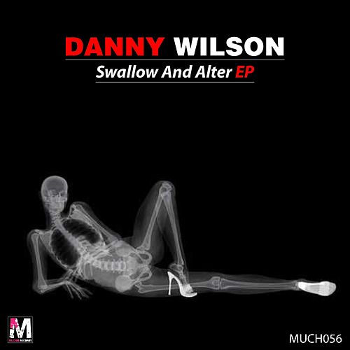 Swallow & Alter EP by Danny Wilson
