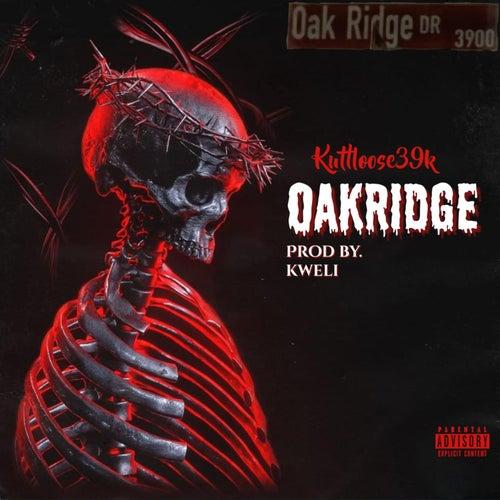 OAKRIDGE by Kuttloose39k