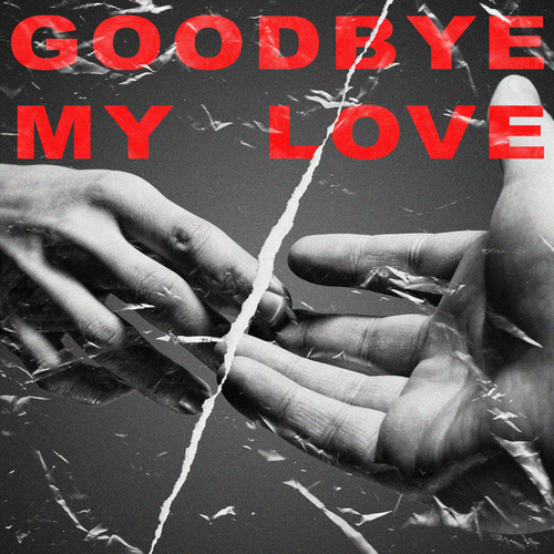 Goodbye My Love di Various Artists