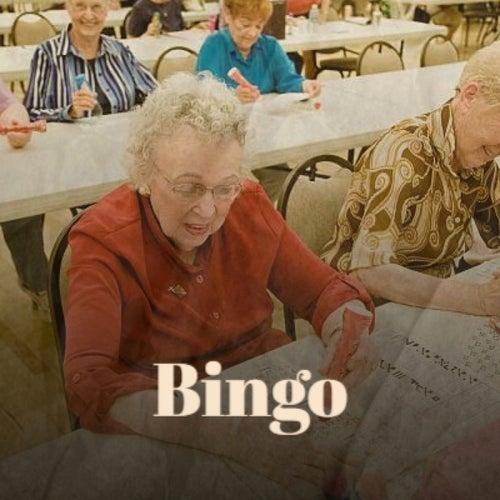 Bingo by Various Artists