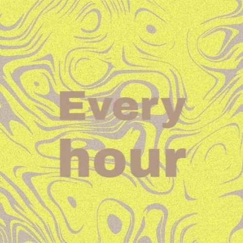 Every hour by Various Artists