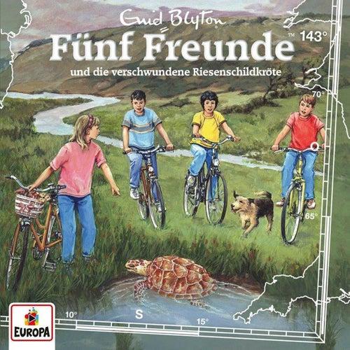 143/und die verschwundene Riesenschildkröte by Fünf Freunde