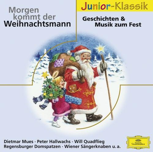 Morgen kommt der Weihnachtsmann von Various Artists