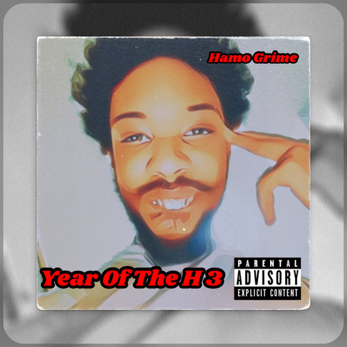 Year of the H 3 by Hamo Grime