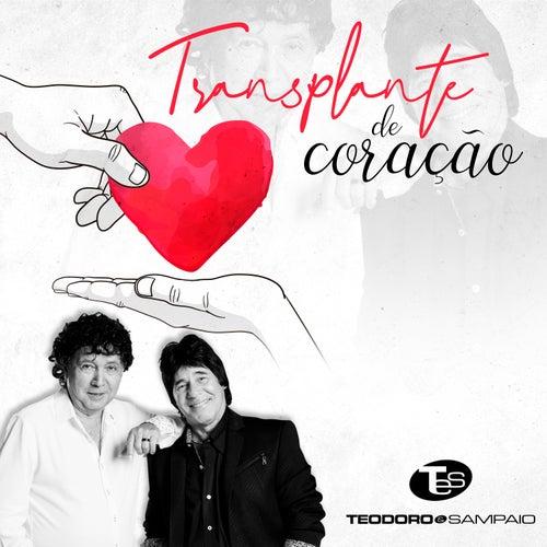 Transplante de Coração de Teodoro & Sampaio