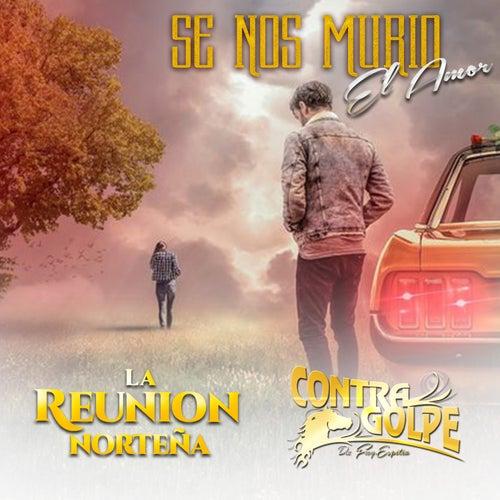 Se Nos Murió el Amor by La Reunion Norteña