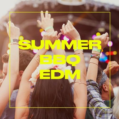 Summer BBQ: EDM von Various Artists