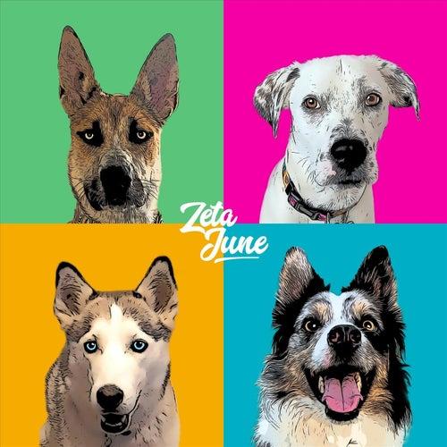 Live at Dog House Studios de Zeta June
