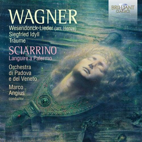Wagner: Wesendonck-Lieder, Siegfried Idyll, Träume; Sciarrino: Languire a Palermo by Orchestra Di Padova E Del Veneto