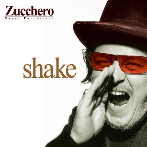 Shake de Zucchero
