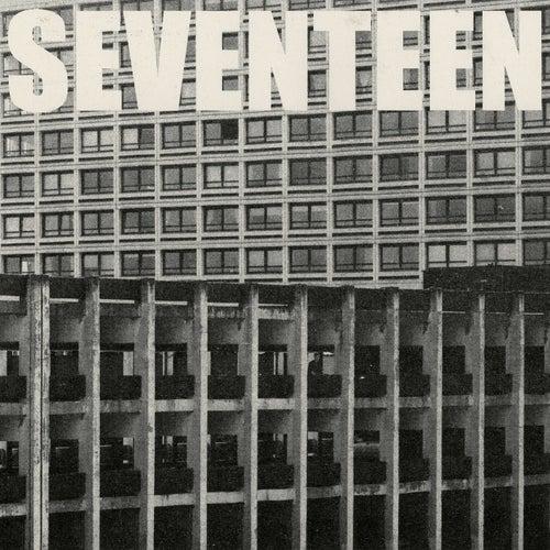 Seventeen Going Under by Sam Fender