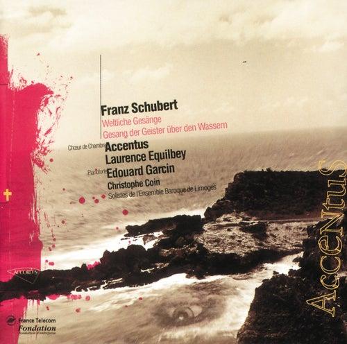 Schubert-Oeuvres vocales profanes de Laurence Equilbey